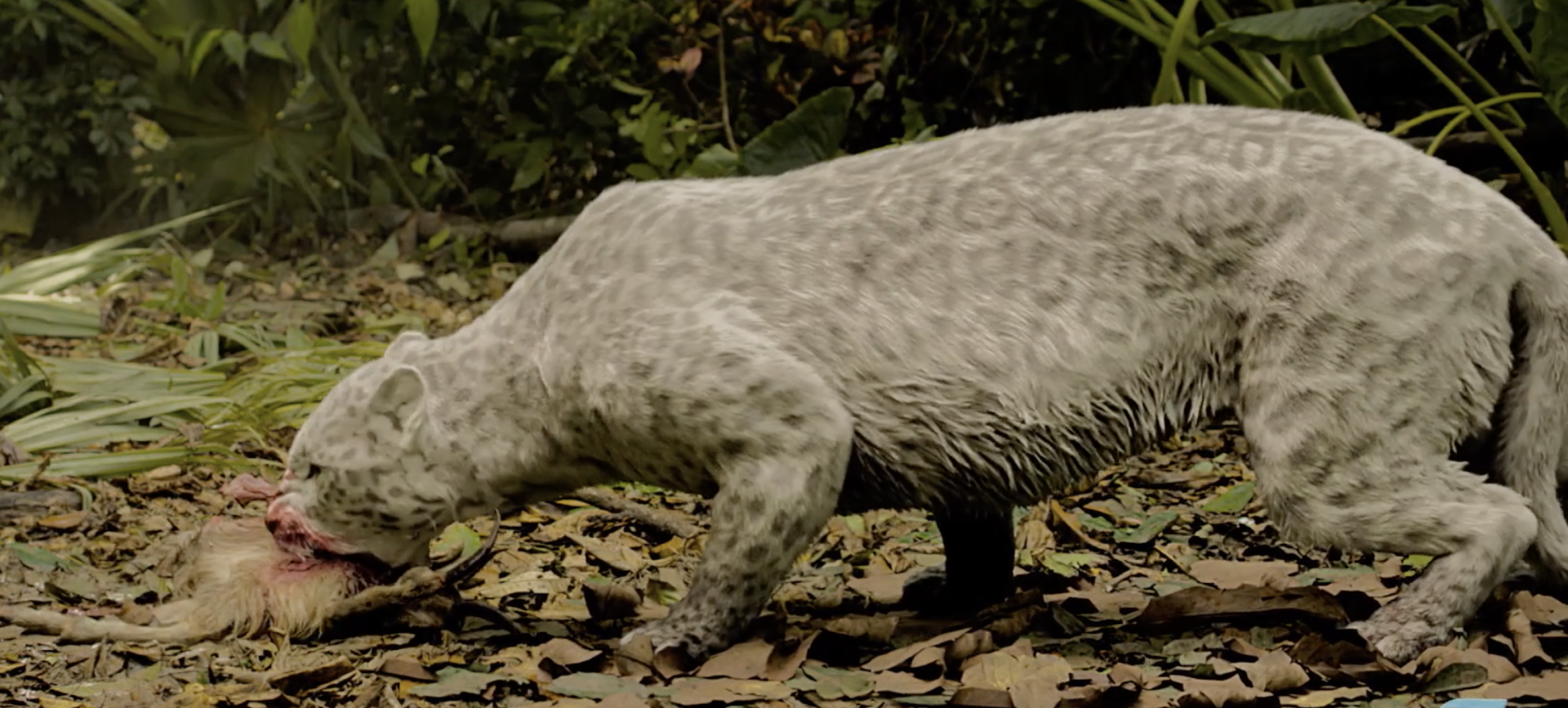 Deadly Animals Stalk Nicolas Cage with Help from Ziva VFX
