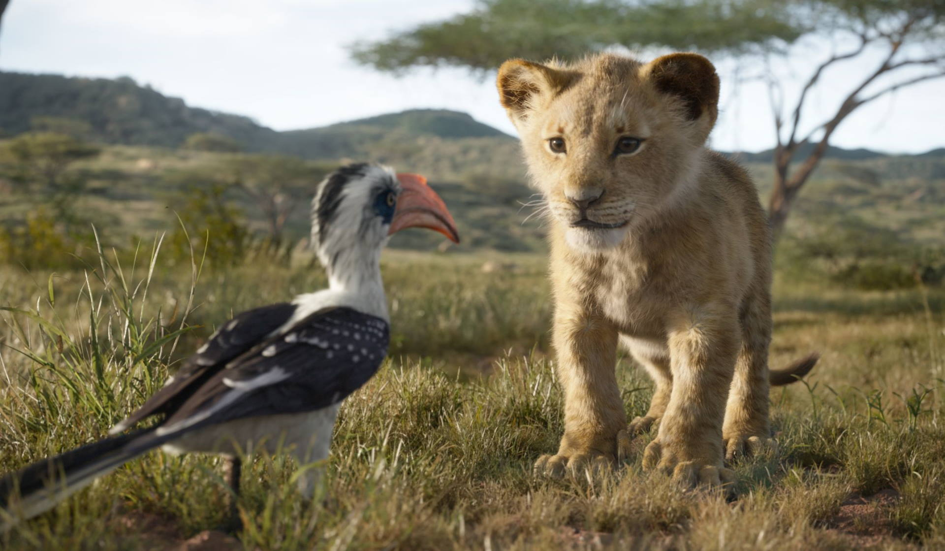 New Lion King Images – MPC Film